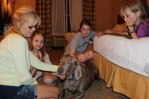 Holiday Inn Express Coeur d'Alene ID Hotel Dog Dodger StuffedSuitcase.com