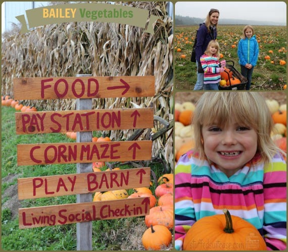 Pumpkin Patch Seattle Weekend Family Fun with Corn Maze Seattle Bailey Vegetables StuffedSuitcase.com #fall #activity
