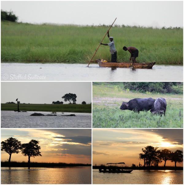 River Safari Cruise on Chobe River Botswana