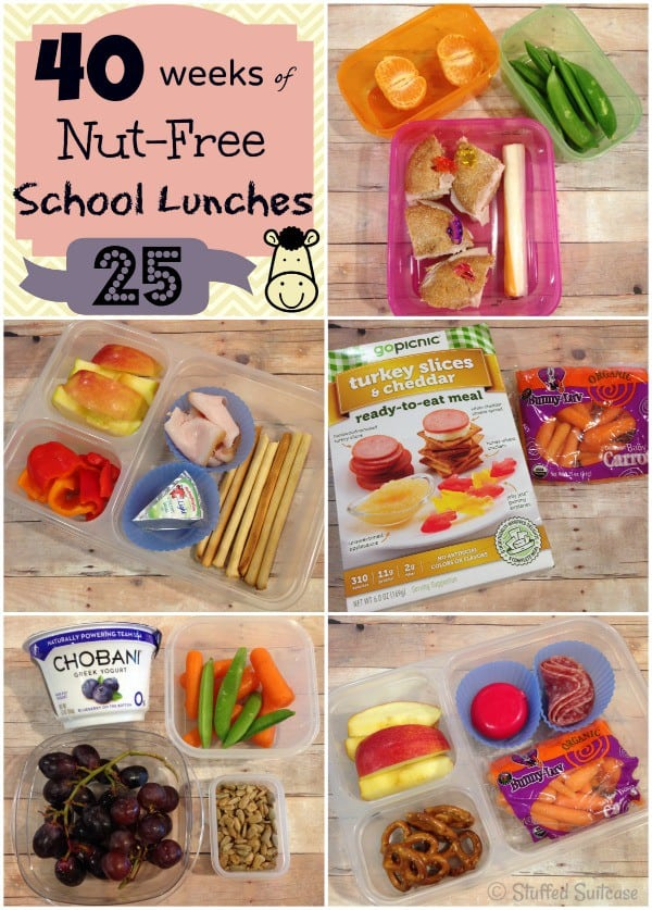 Kids School Lunch Ideas - Week 25 of 40 nut free lunches StuffedSuitcase.com