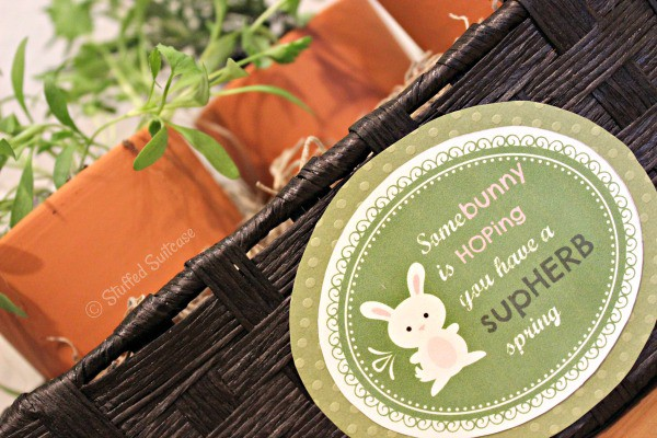 Printable Teacher Appreciation Gift Tag: Somebunny is HOPing you have a SupHERB Spring StuffedSuitcase.com craft