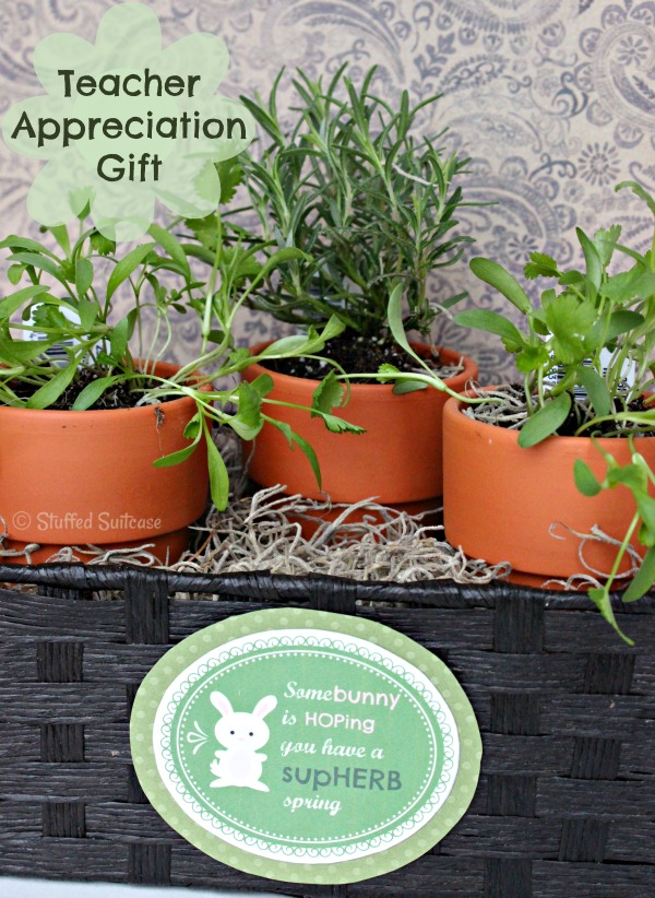 Teacher Appreciation Gift: SupHERB Spring Carrot Garden with Free Printable DIY Bunny Tag StuffedSuitcase.com craft