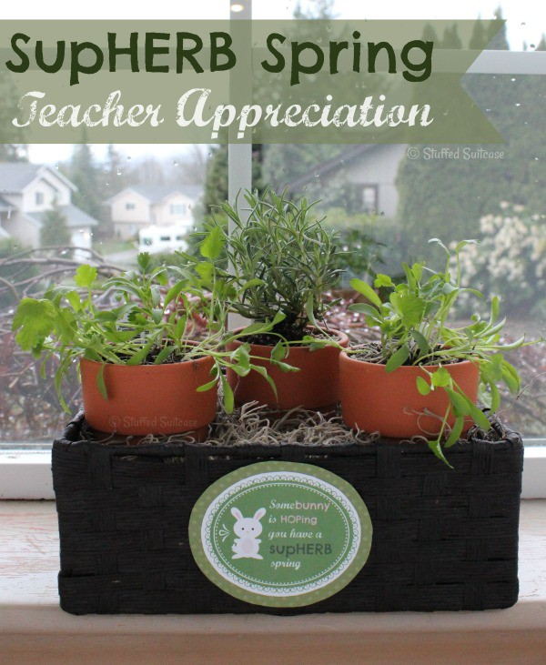 Teacher Appreciation Gift: SupHERB Spring Carrot Bunny Garden + Free Printable Tag StuffedSuitcase.com diy craft