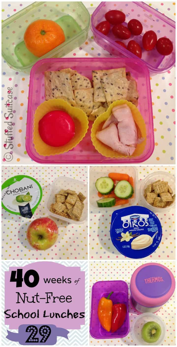 Kids School Lunches - Week 29 of 40 packed school lunch ideas StuffedSuitcase.com