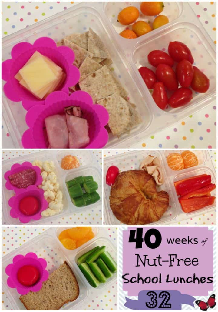 Kids Nut Free School Lunches: Week 32 of 40 of packed lunch ideas | StuffedSuitcase.com
