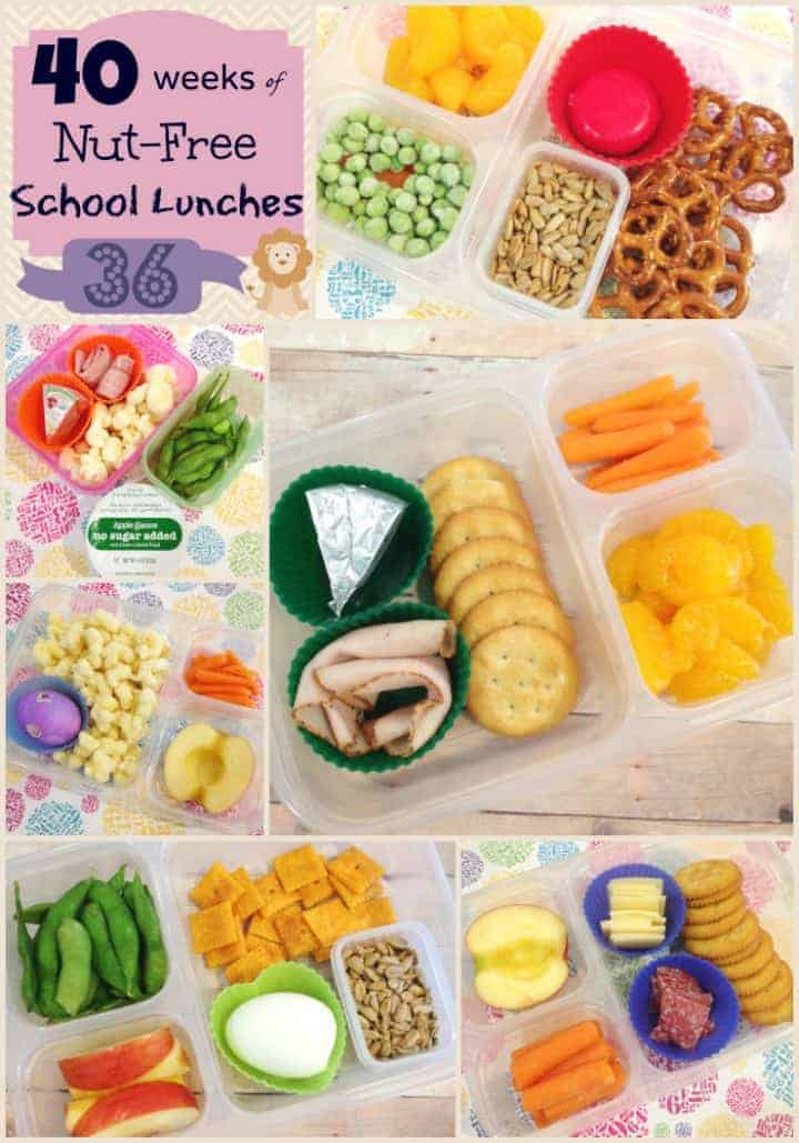 Ideas for nut free packed kids school lunches - Week 36 of 40 | StuffedSuitcase.com