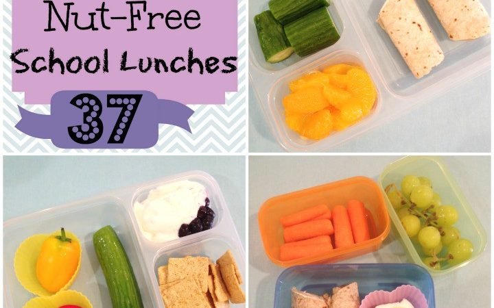 Our Recent Nut Allergy Experience + Week 37 Kids Nut-Free School Lunches