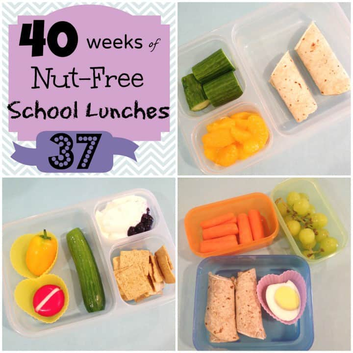 Week 37 of 40 Nut free Kids School Lunches - lunch ideas | StuffedSuitcase.com