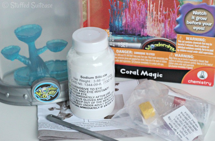 Coral Magic Science Kit is great for teaching kids about chemistry!