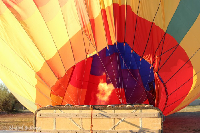Phoenix-Hot-Air-Balloons-7