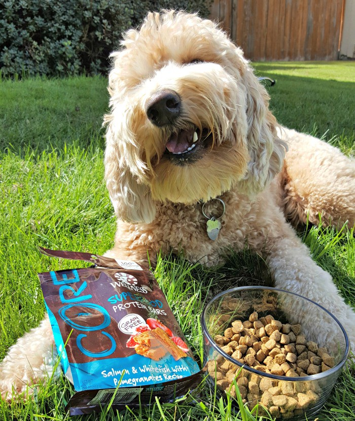 Sophie loves her Wellness CORE dog food and treats, and I love that it's healthy and made with quality ingredients!