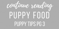 puppy-potty-training-tips-best-puppy-food
