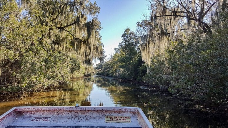 airboat view in lousiana