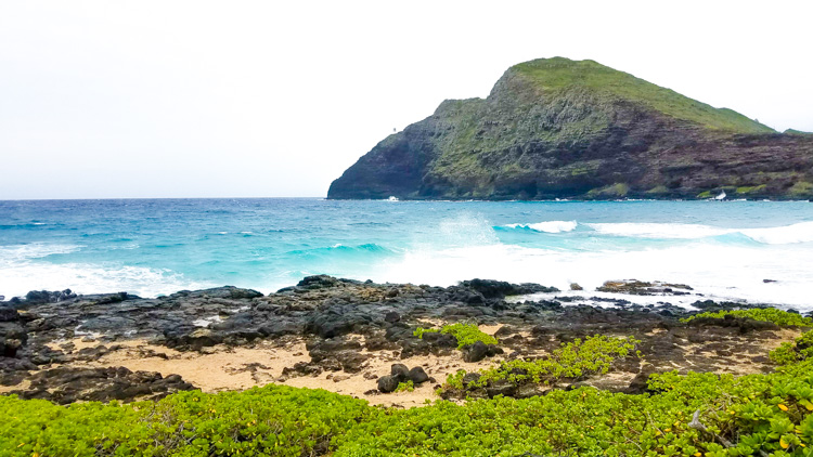 Taking an island tour is a fun thing to do in Oahu to help you get familiar with the island