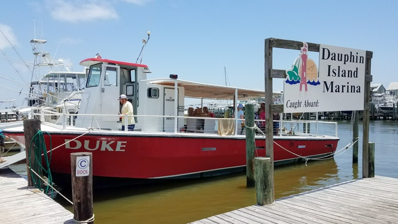 dauphin island dolphin cruise boat tour what to do in gulf shores alabama