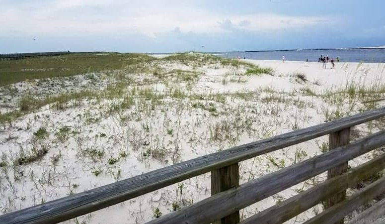 Best Things to Do in Gulf Shores Alabama Beaches
