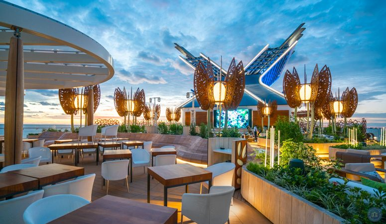 rooftop garden on celebrity cruises newest ship the edge