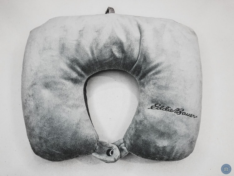 eddie bauer travel pillow