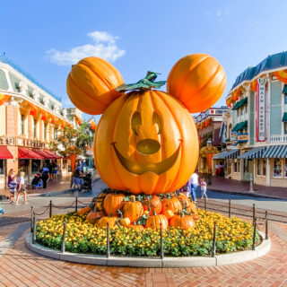 disneyland halloween time pumpkin on main street usa