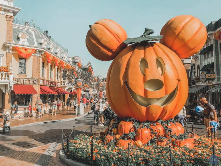 Disneyland Halloween Main Street Pumpkin