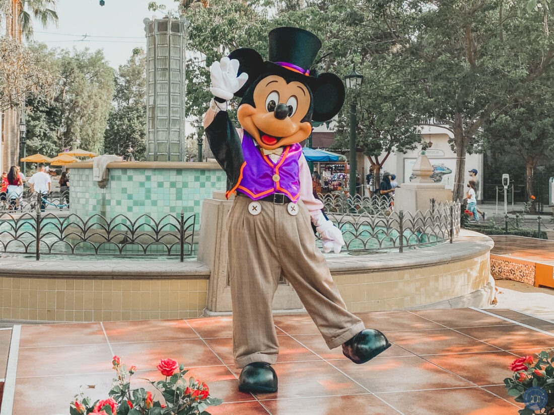 mickey mouse in halloween attire