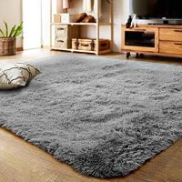 Ultra Soft Indoor Rug