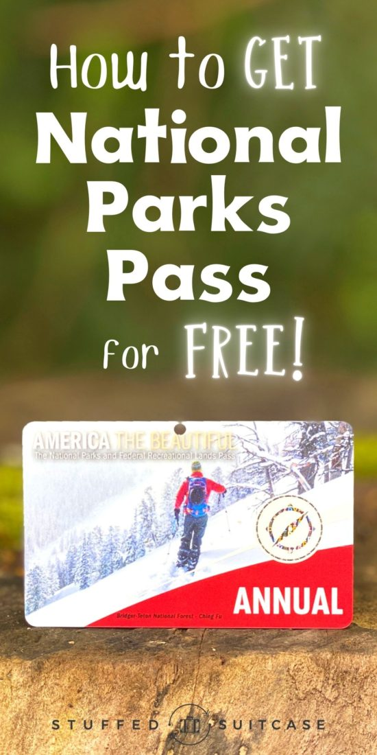 annual national park pass pin image