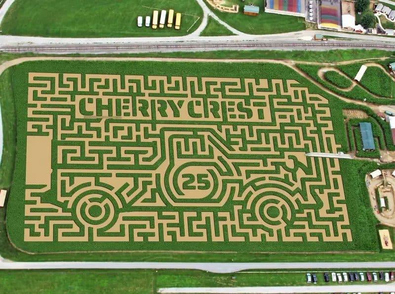cherry crest farm corn maize