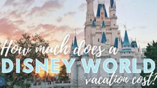 cinderella castle at walt disney world with text for how much does a disney world vacation cost